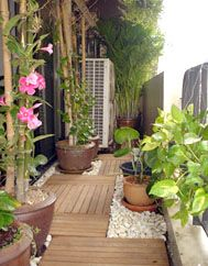 Good Questions Plants For Balcony Side Design Elements Balcony