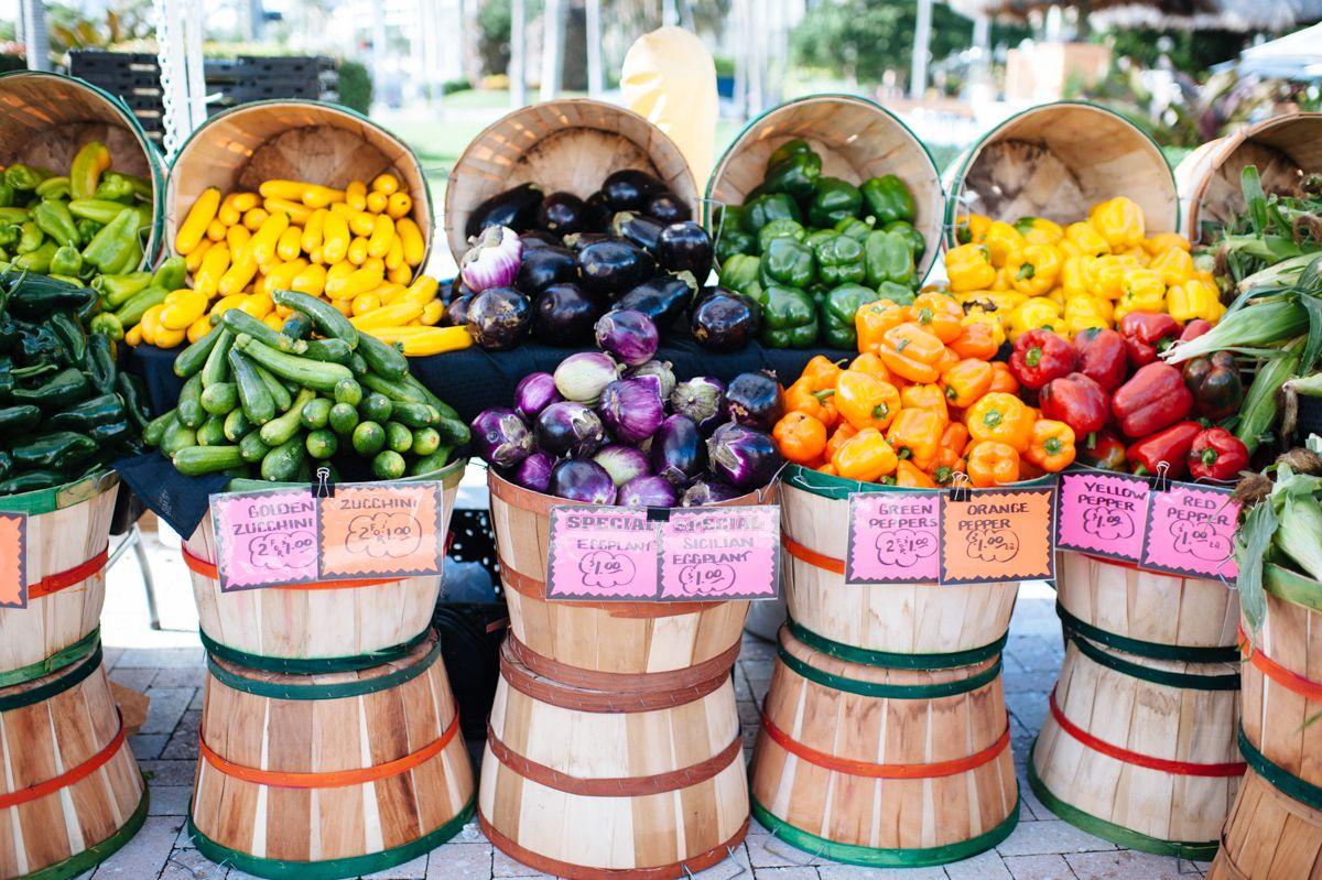 West Palm Beach Green Market Photo Hannahmayo Com West Palm Beach Green Palm Beach
