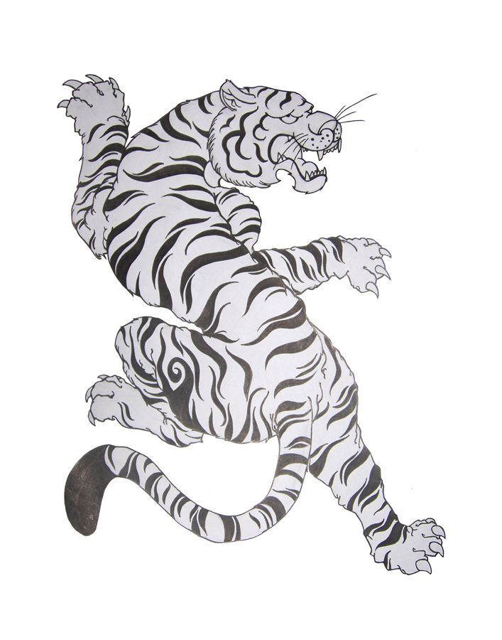 Felino White Tiger By Cheeraw Jpg 707 900
