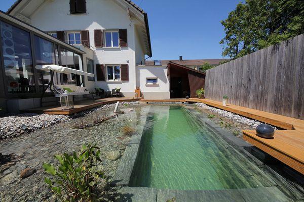Erst Dachte Ich Wer So Etwas In Seinen Garten Baut Ist Verruckt Aber Jetzt Glaube Ich Dass Er Ein Genie Ist Naturschwimmteich Hintergarten Naturschwimmbad