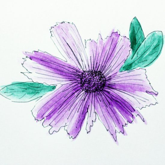 Learn how to paint this pretty watercolor flower with an for How to paint watercolor flowers step by step