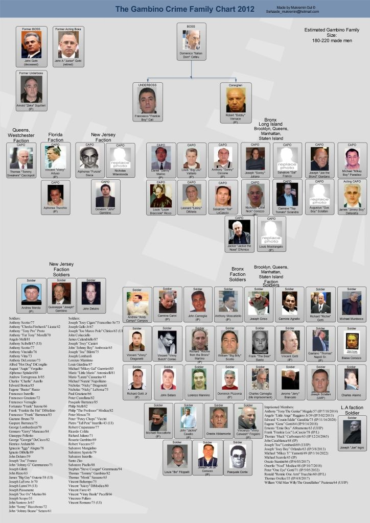 Gambino Crime Family Official Boss Peter  - capo chart