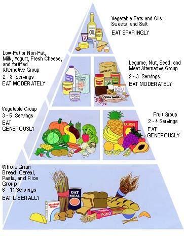 My Experience Living With Pancreatitis Vegetarian Food Pyramid