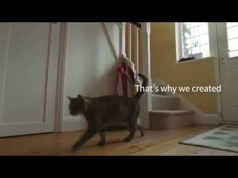 Sureflap Microchip Pet Feeder Dog Doors Cat Doors Pet Doors For
