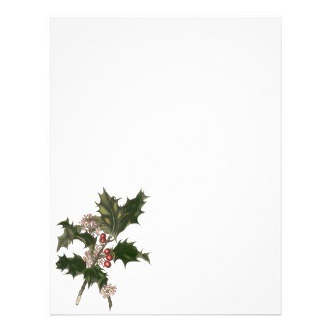 Vintage Christmas, Green Holly Plant with Berries Flyer