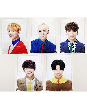K2POP - [SM OFFICIAL GOODS] SHINEE OFFICIAL GOODS : SHINEE CUSHION COVER