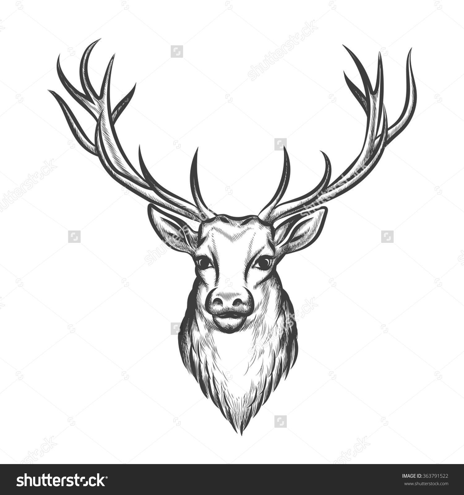 Reindeer head drawing - photo#12