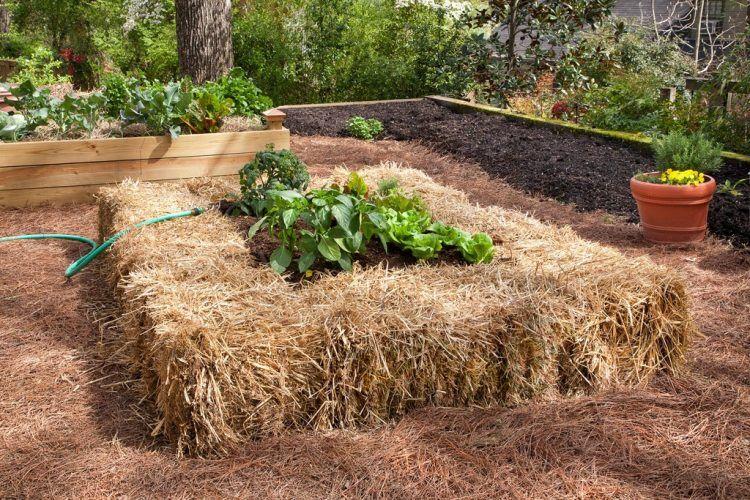 72c37892b7b32154f6c13ba4c6d38328 - Hay Bale Gardening Effortless Food Production