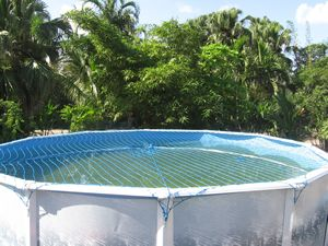 Details about round above ground swimming pool safety net cover water warden 15 18 21 24 27 30 for Swimming pool safety net covers