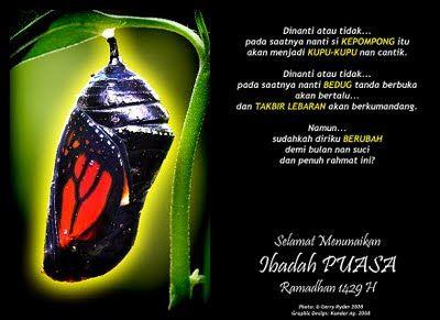 Cutemiut78 E Kad Ucapan Selamat Berpuasa Stuffed Peppers Ramadhan Eggplant