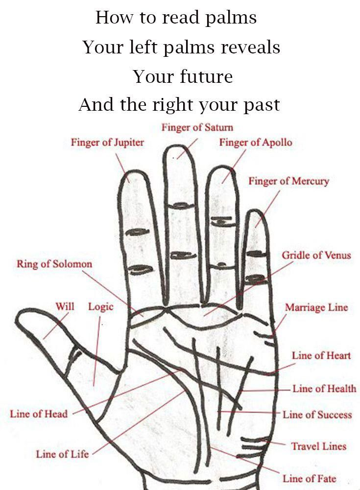How To Read Palms Palm Reading Palm Reading Charts Palm