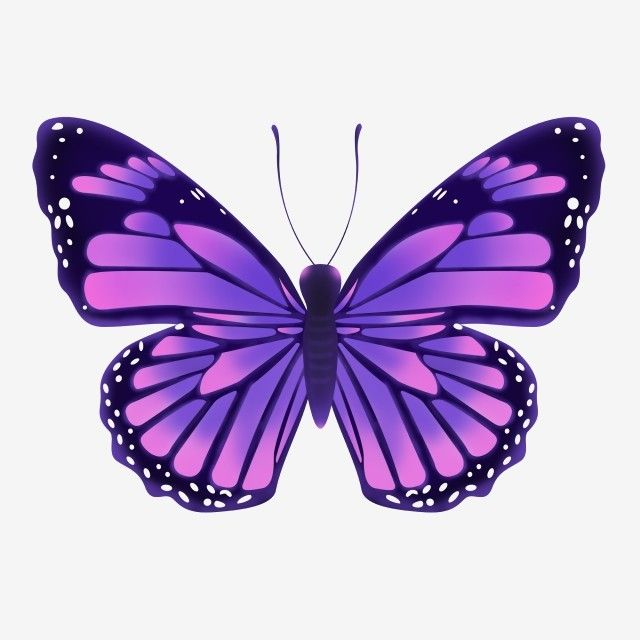 Purple Butterfly Png Material Butterfly Clipart Purple Butterfly Butterfly Png Transparent Clipart Image And Psd File For Free Download Cartoon Butterfly Purple Butterfly Butterfly Clip Art