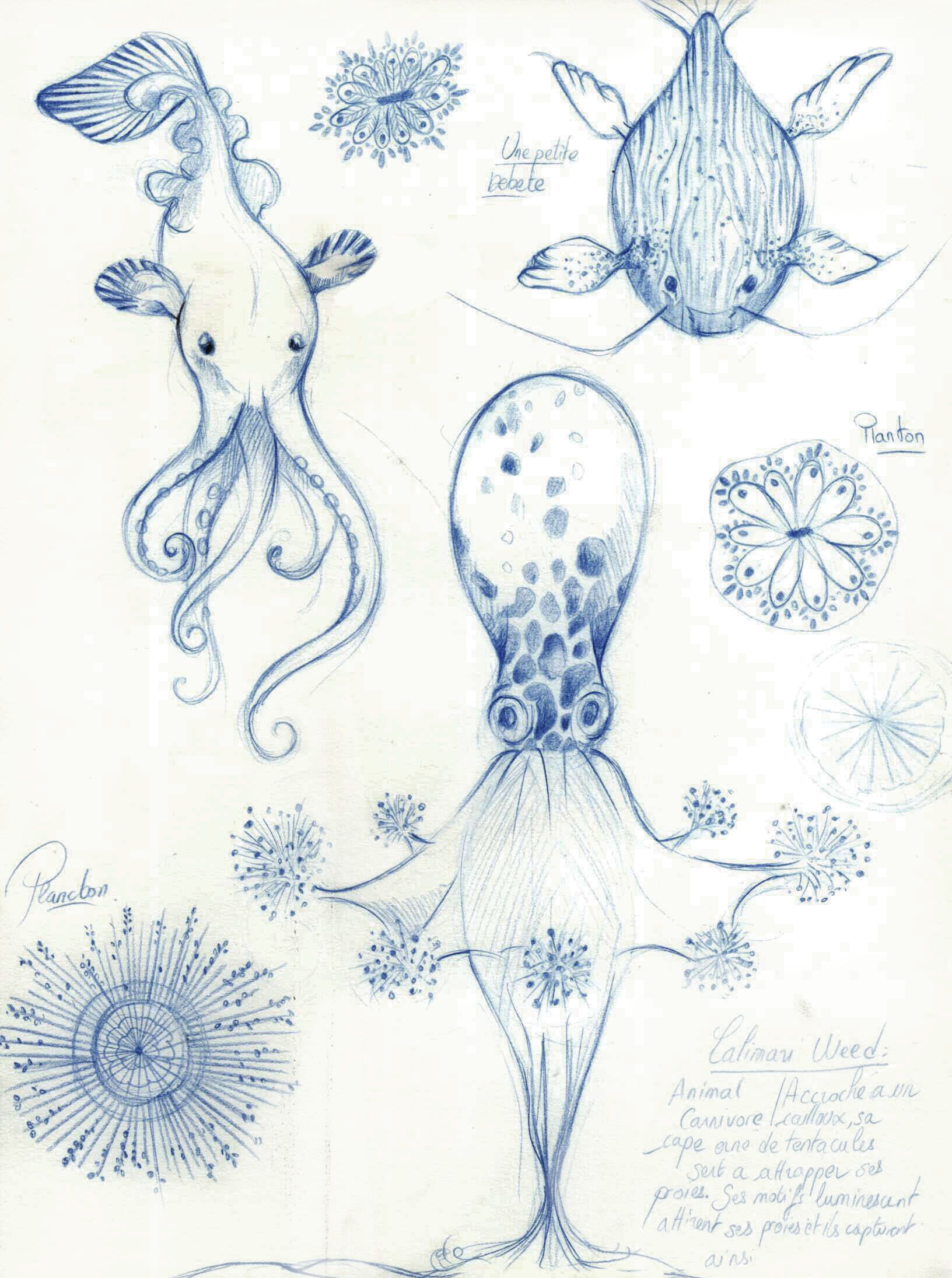 Undersea Creatures Concept Art Character Design Photomontage Gribouillage