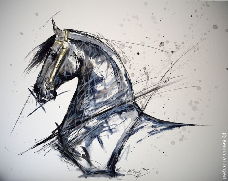 Line Drawing Deer : Deer stalking « anna login u paintings drawings and jewellery