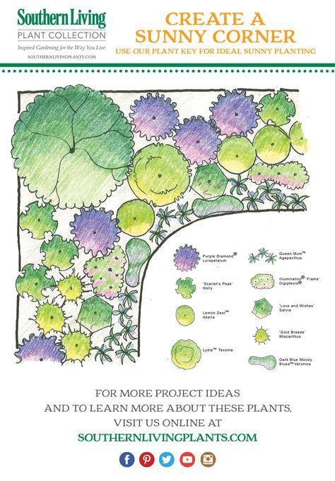 Design Spotlight Plan For A Sunny Corner Garden Landscape Plans Corner Garden Garden Design Plans