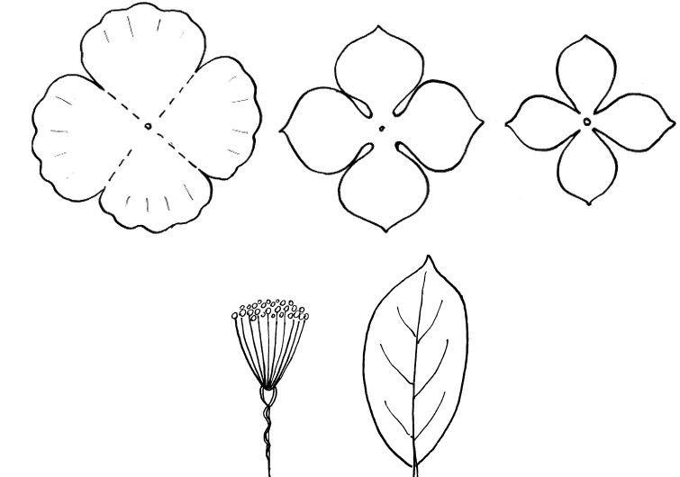 Цветы из фоамирана для открыток шаблоны
