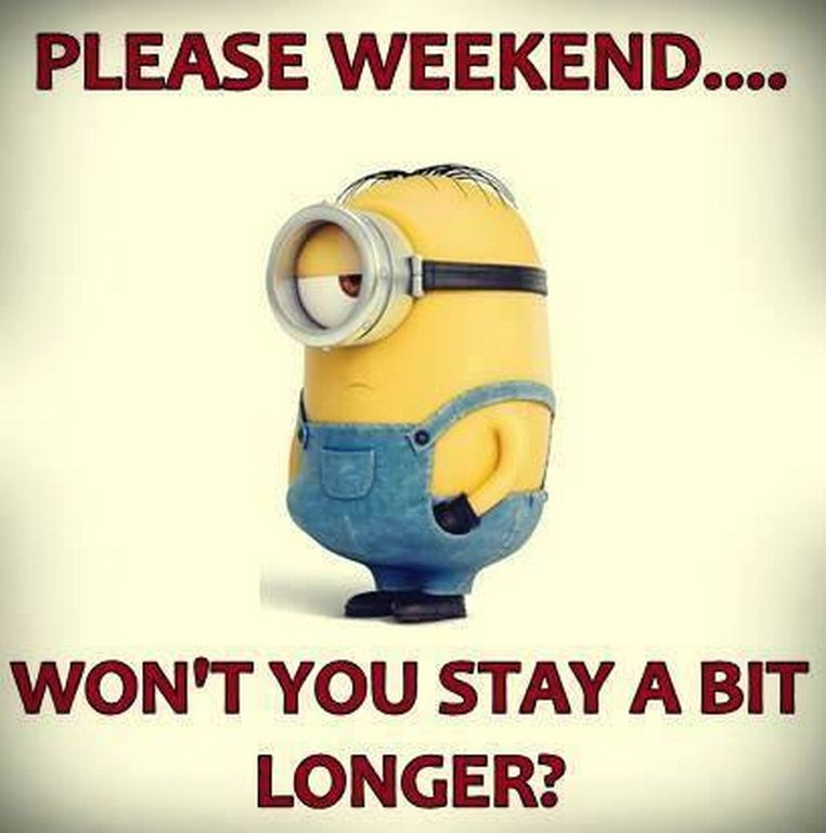 Lovely Yes Please Stay!!!!! Minions Funny QuotesMinion ...
