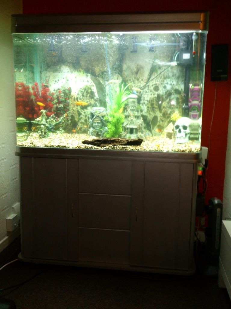 Tropical freshwater aquarium fish uk - Kerry S 120cm Cabinet Tank In Silver Http Www Allpondsolutions Co