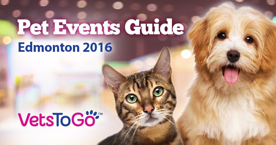 Edmonton Pet Events Guide 2016 (With images) Pets