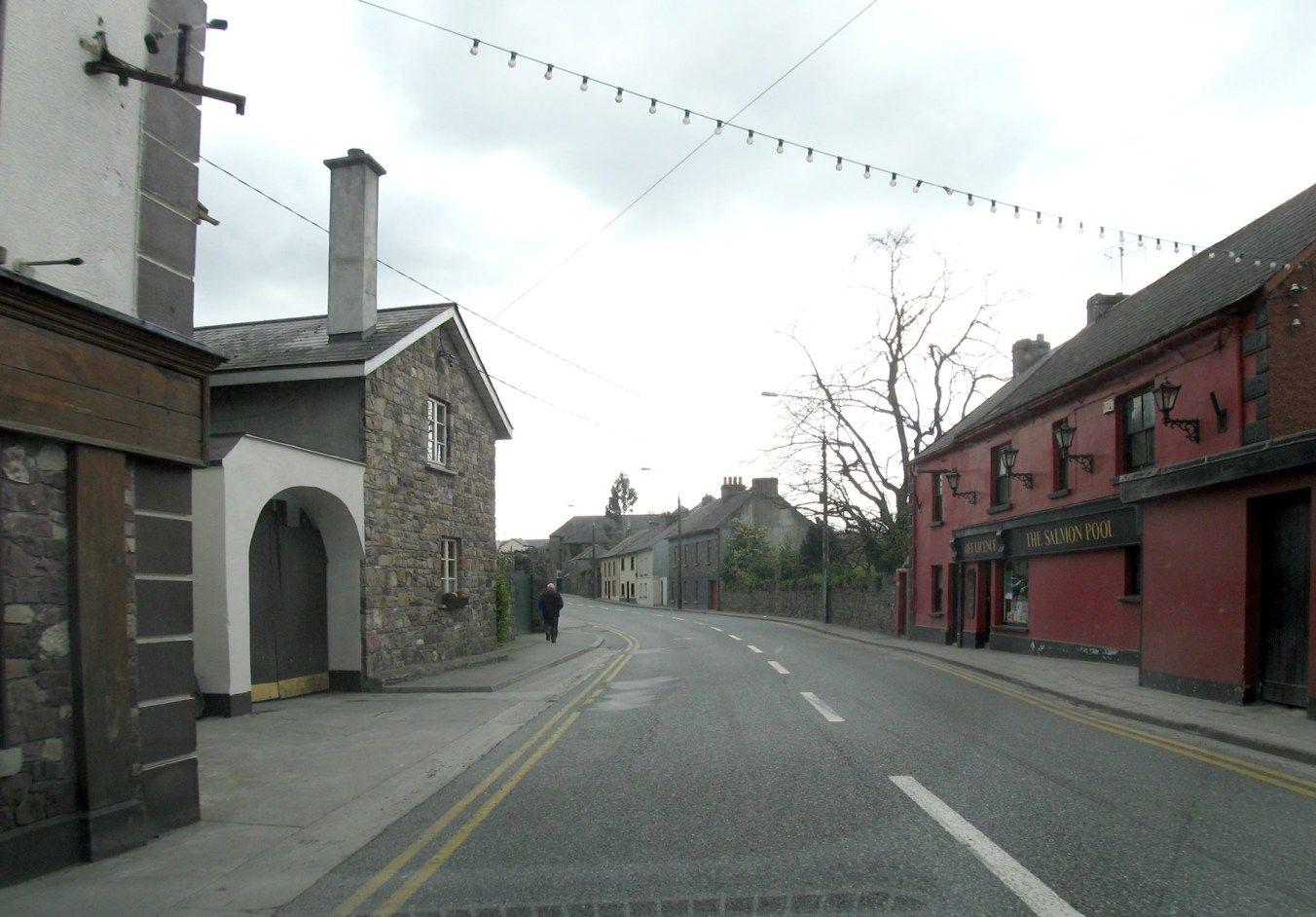 The Salmon Pool, Mill Street, Thomastown, Co Kilkenny