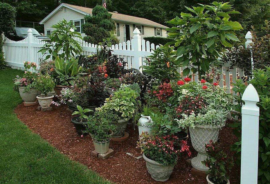 Build Your Own Home Garden