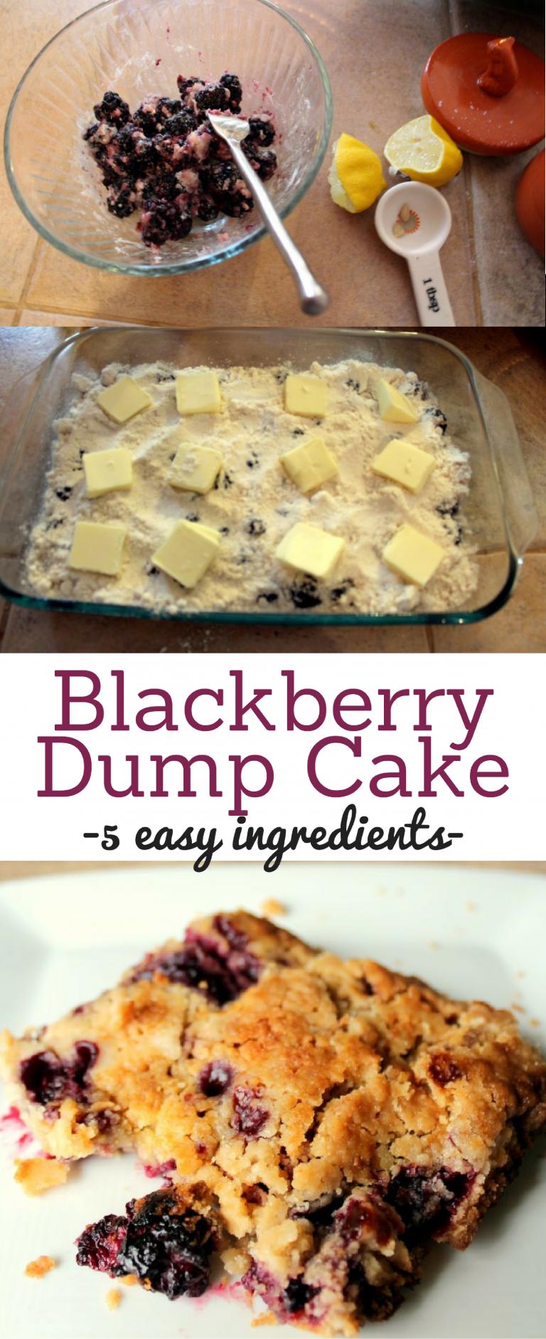 Blackberry Dump Cake - Blackberry Cobber with Cake Mix Recipe