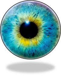 Kartinki Po Zaprosu Eyeball Png Eye Drawing Eye Texture Iris Eye