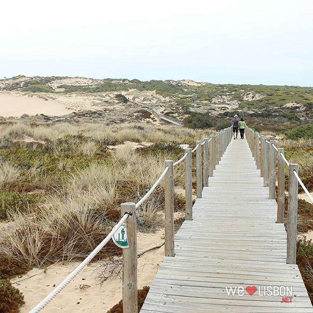 Guincho #beach #morning #walk #Lisbon #Cascais #welovelisbonpt #Portugal #Travel