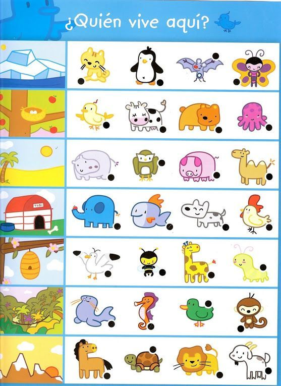 Animal Worksheet For Kindergarten Hayvanlar Pinterest