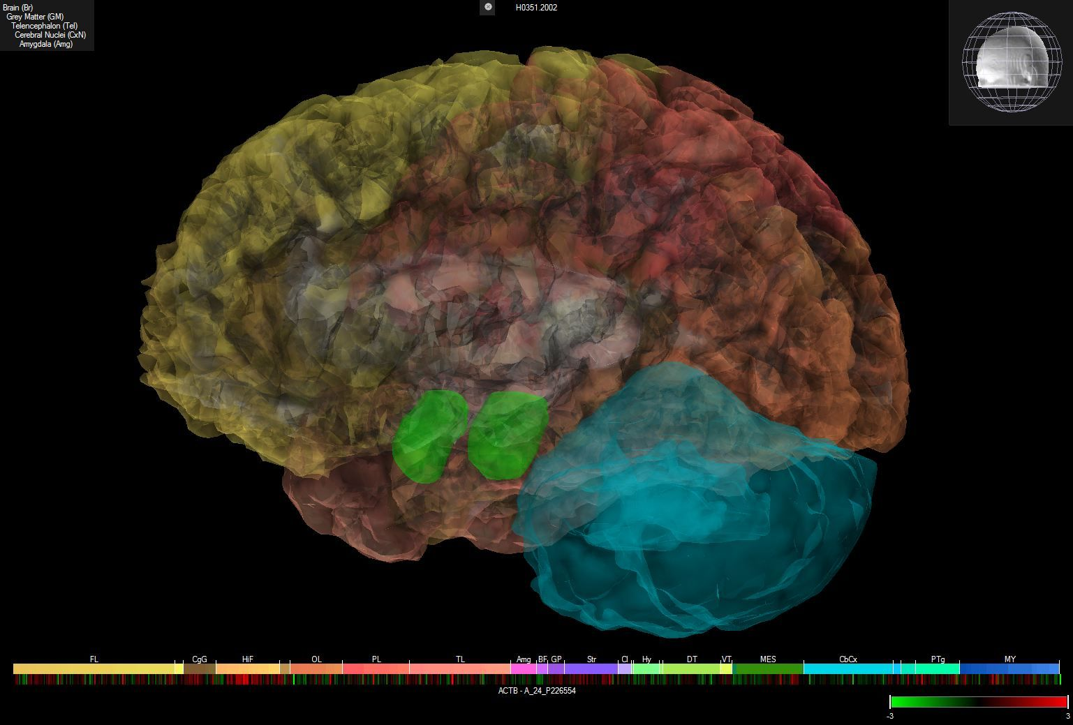 white house pitches brain mapping project photo allen institute