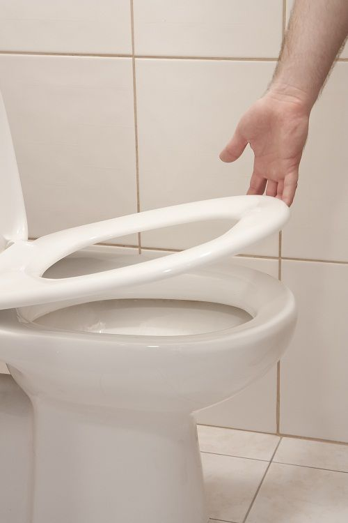 How To Replace Toilet Seat Bumpers Toilet Toilet Seat Replace Toilet