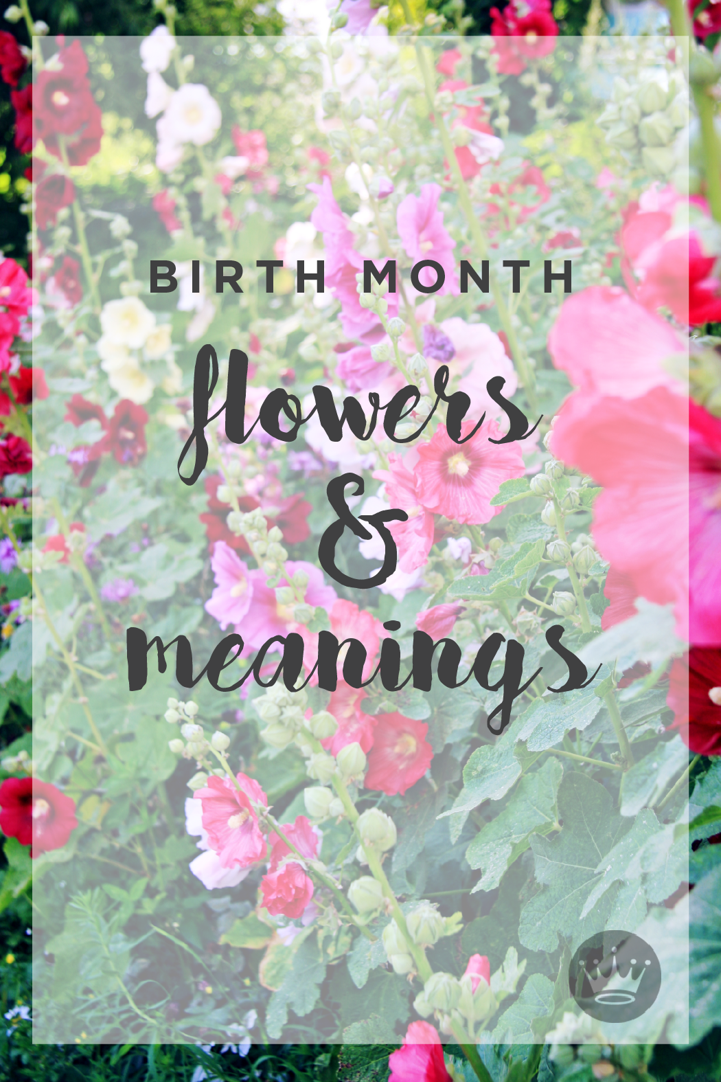 Birth flowers & meanings Birth flowers, Birth month