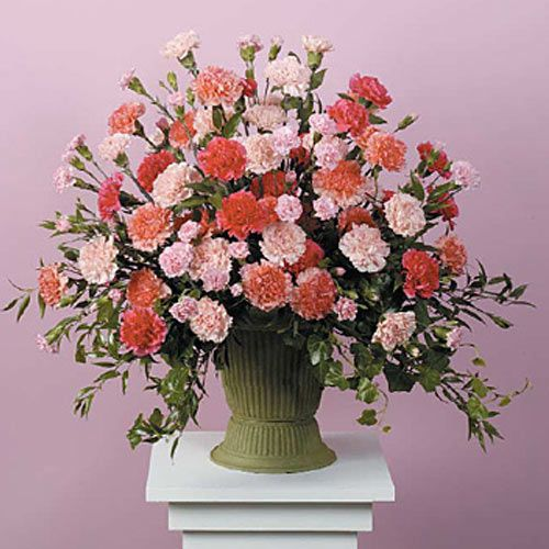 Jhsf060 21 Pink And Peach Carnation Urn Funeral Flowers Flower Delivery Pink Carnations