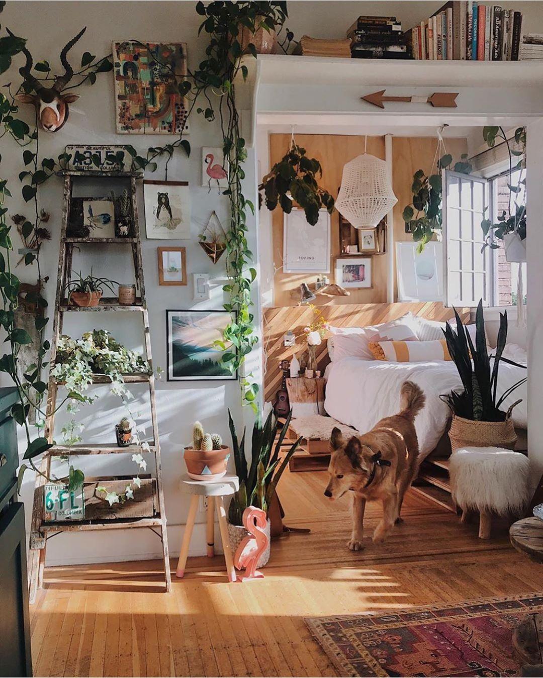 Time For A Sundowner In The Urban Jungle By Brittanyshmyr Urbanjunglebloggers Home Decor Apartment Decor Room Decor Urban jungle bedroom ideas
