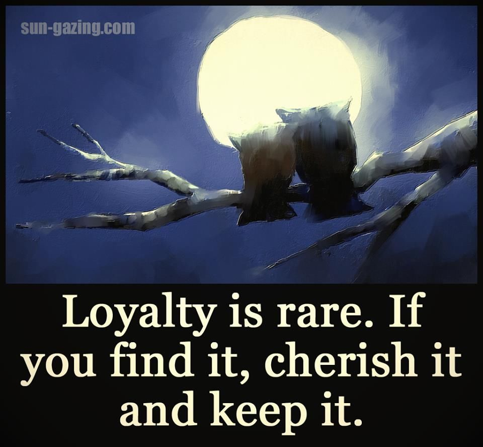 Fish aquarium quotes - Loyalty Is Rare If You Find It Cherish It And Keep It Life Quotes Quotes Quote