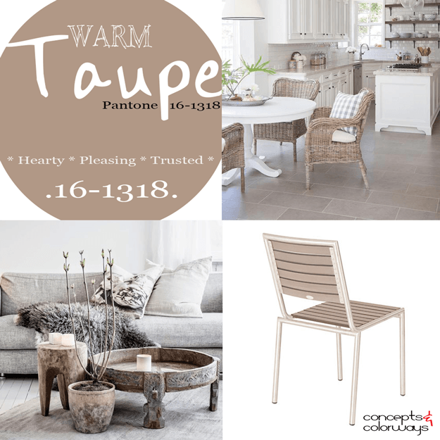 Pantone warm taupe used in interior design 2016 color for What color family is taupe