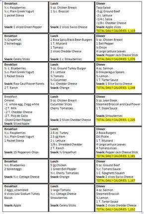 Hcg Diet Menu Sample Printable  My Triumph Phase  Sample Menu