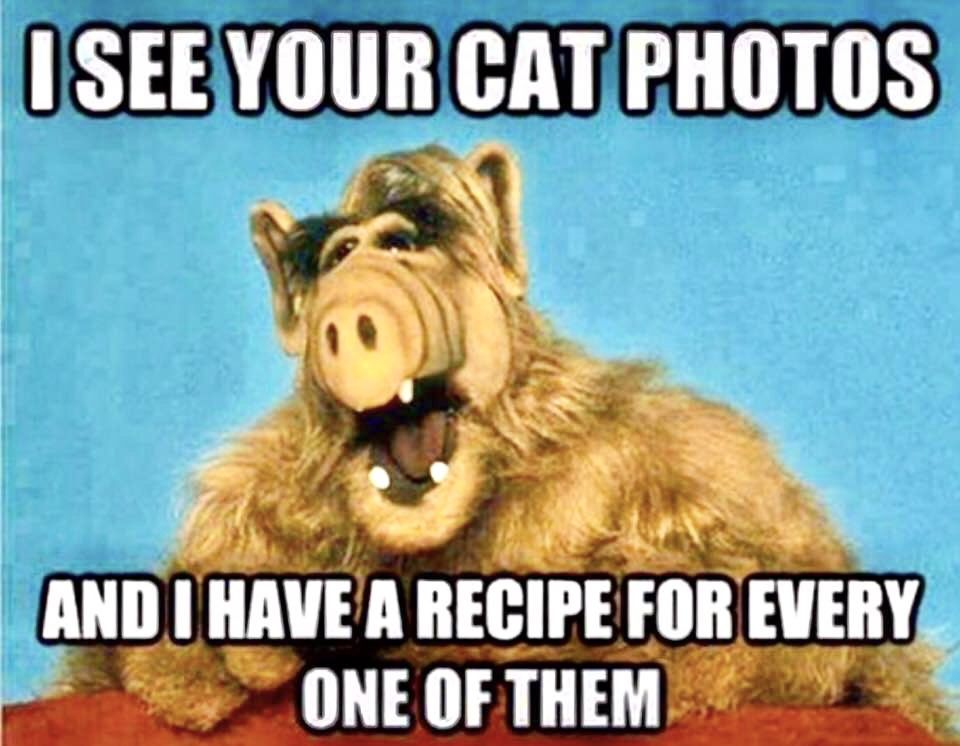 Remember Alf From Melmac Alf The Alein Funny Pictures Funny
