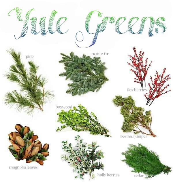 winter solstice yule greens for the winter solstice pagan pinned by the mystics emporium on etsy - Christmas Greenery