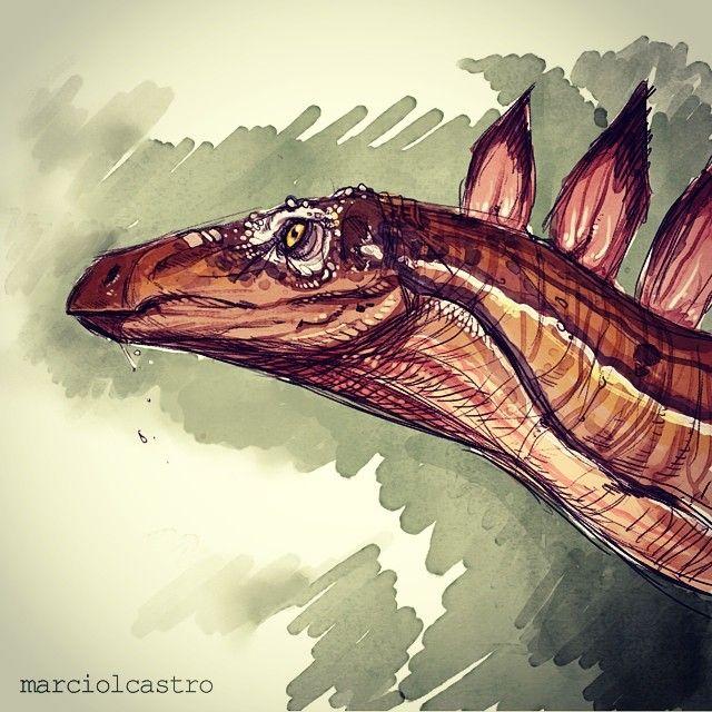Stegosaurus By Marcio L Castro Marciolcastrotumblr