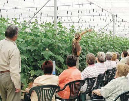 """El Ministerio de #Agricultura, #Alimentación y #Medio #Ambiente ha otorgado el Premios  """"Excelencia a la innovación en diversificación de la actividad económica en el medio rural"""" a la empresa 'Clisol Agro' de #El #Ejido."""