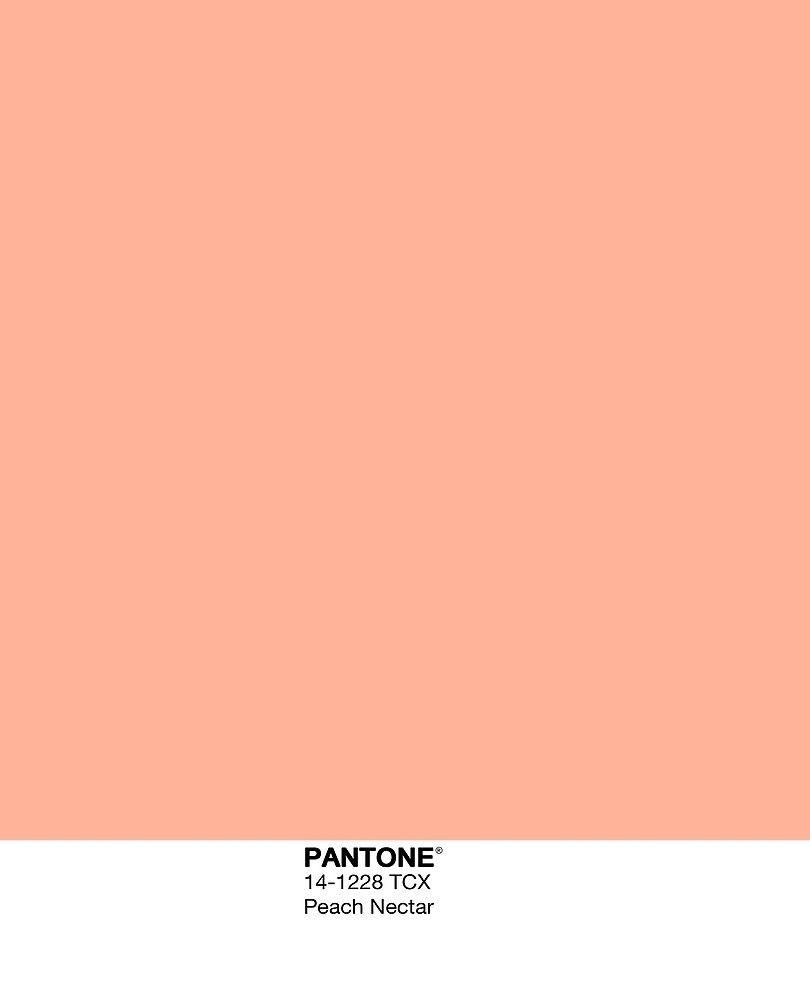peach nectar peach wallpaper peach aesthetic pantone colour palettes peach aesthetic pantone colour palettes