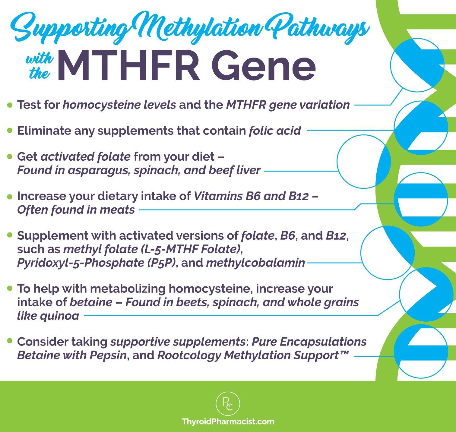 Pin On Mthfr Mutation