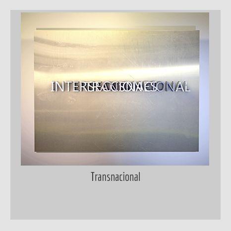 TRANSNACIONAL. YENY CASANUEVA Y ALEJANDRO GONZÁLEZ. PROYECTO PROCESUAL ART.