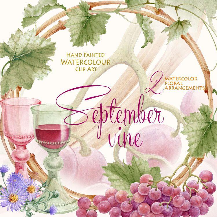 Watercolor Vine Clipart Grape Vine Autumn Wine Label Wedding ...