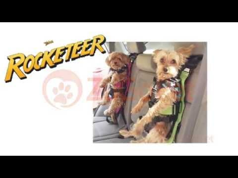 How To Place Your Dog In The Rocketeer Pack Car Seat By ZuGoPet