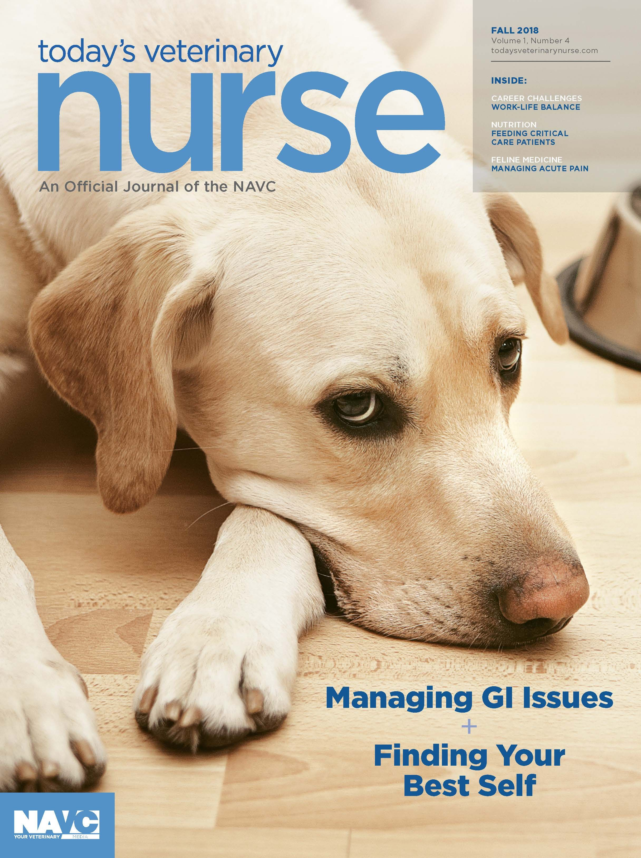 Subscribe (With images) Veterinary, Animal companions, Nurse