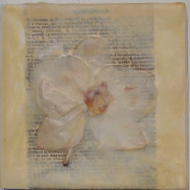 """""""Usually Without"""" Encaustic wax, pressed phalenopsis 4"""" x 4"""" 2013"""