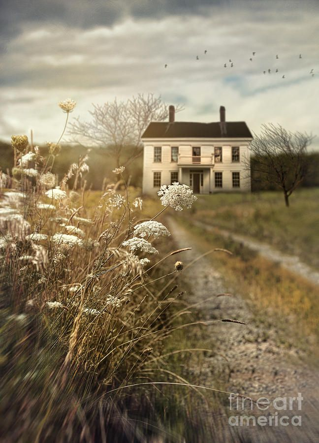 Old Abandoned House With Country Path by Sandra Cunningham ...