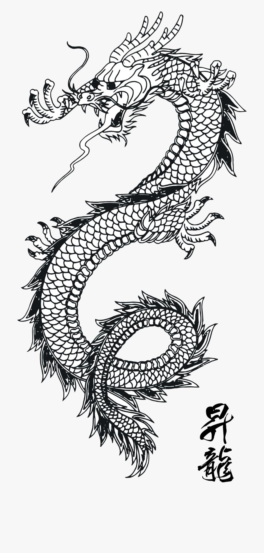 Chinese Dragon Tattoo Png Dragon Tattoo Arm Chinese Dragon Tattoos Asian Dragon Tattoo